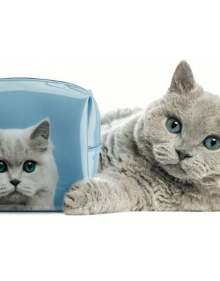 Neceser chica cat on blue